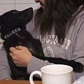 Photos: 抱っこすると安心するセナ君