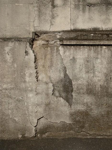 写真: 壁面模様