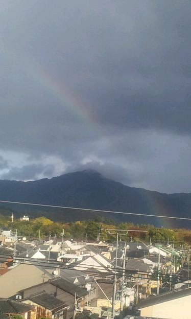 久し振りに見た虹