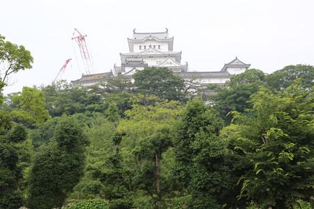 シロトピア公園から姫路城 - 1