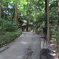 写真: 100513-23高千穂神社1