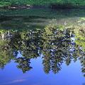 写真: 100722-70蝶ヶ岳登山・妖精の池