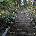 写真: 101119-14羽黒三田神社の階段