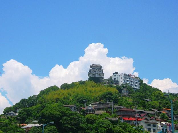 新緑の千光寺山を見上げれば