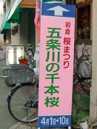 岩倉桜まつり 2010' 2010年4月1日(木)〜10日(土)-220327-1