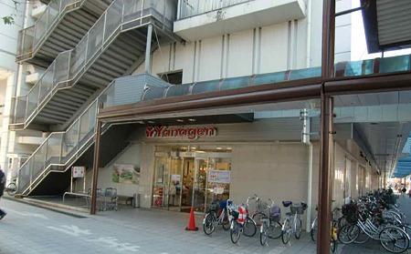 yanagen ogakihonten-221218-3