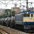 写真: pf1041-20080703