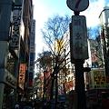 Photos: 2010-12-12 12_45_56