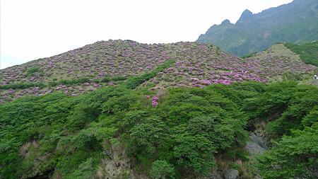 仙酔峡(3)