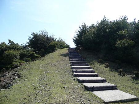 kasiwabarayama6