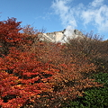 Photos: IMG_8928那須 茶臼岳 姥ヶ平の紅葉