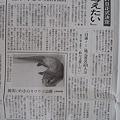 Photos: 朝日新聞 5.25 求める会 記事2