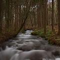 Photos: 水の道