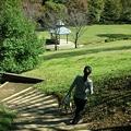 写真: 真光寺公園
