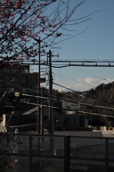 写真: D3B_1701.resize