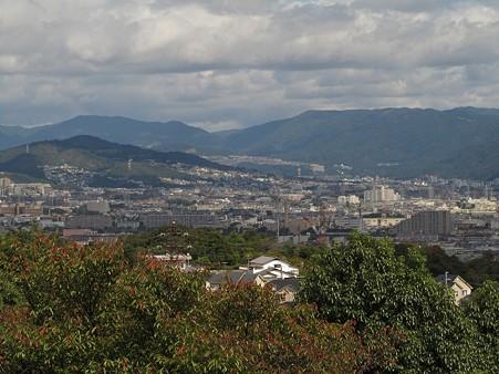 20101010 甲山森林公園011