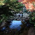 Photos: 宮島の紅葉谷公園の風景写真です。