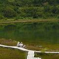 写真: のどかな弓池